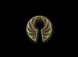 Brass Ear Weight - Checkered Circle