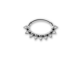 Steel Jewelled Oval Hinged Septum/Daith Ring